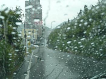 待望の雨.jpg